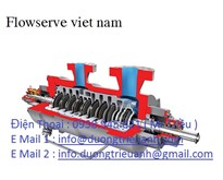 Valves  Flowsever / Flowsever Việt Nam /  Pump  Flowsever  / Thiết bị Flowsever